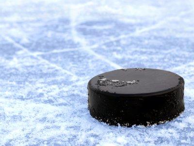 Матч Шведских игр между сборными России и Финляндии может быть сыгран 7 февраля будущего года в Казани